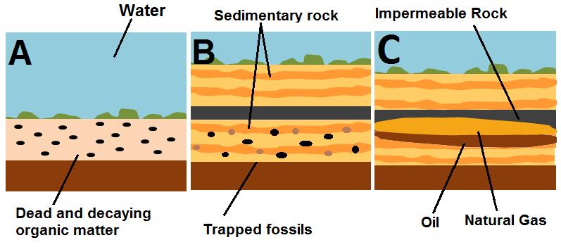 Ilustrasi proses pembentukan minyak bumi