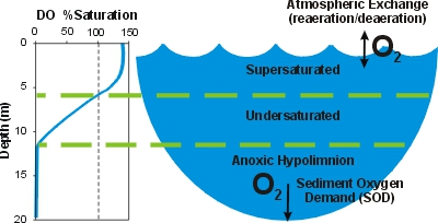 water quality degradation from hydropower energy education rh energyeducation ca dissolved oxygen in water diagram Dissolved Oxygen Graph
