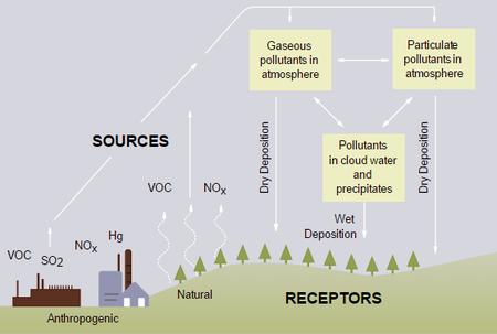 acid rain - energy education